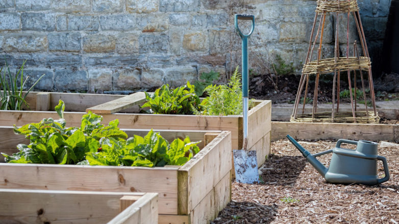 gardening-tips-and-trends-2018-782x440